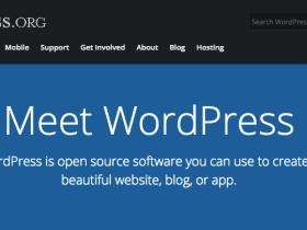 Screenshot of WordPress website