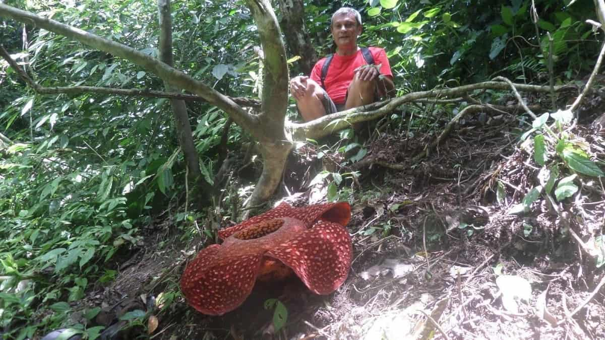 Csaba in Borneo