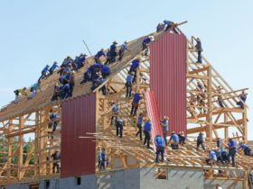A very large group of people collectively building a house together